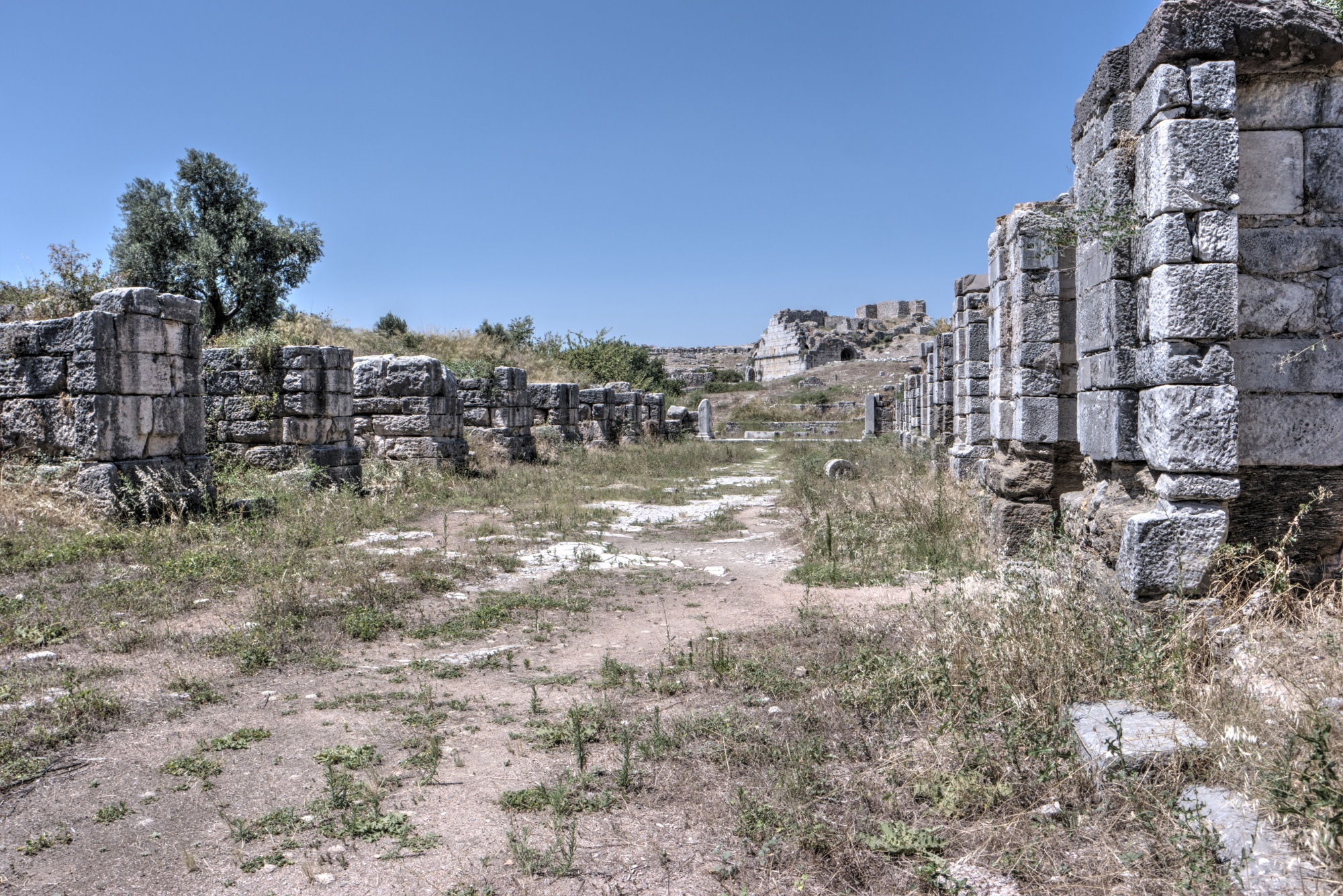 Palaestra of the Baths of Faustina in Miletus