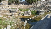 Swamp in the SE corner of the Temple of Apollo, Didim