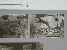 Roman Baths in Didyma - mosaics