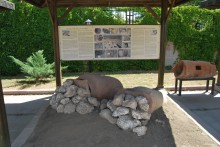 The exhibition in the museum garden