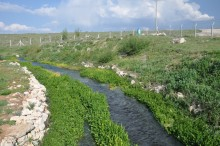 Local stream, feeding the water reservoir of Eflatun Pınar