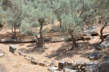 Theatre of Euromos