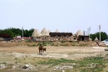 Harran beehive houses (2018)