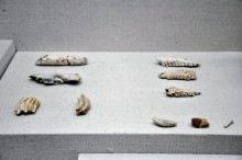 Karain Cave finds exhibited in the Archaeological Museum in Antalya